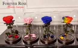 Магазин Forever rose: роза в колбе